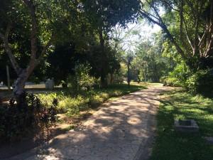 Botanical_Garden5