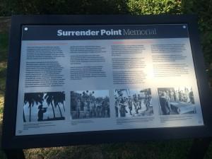 Surrender_point5